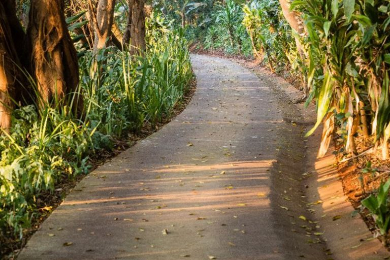 Zimbali family activities nature trails
